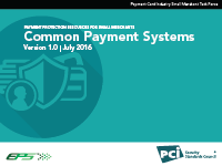 Small Merchant Common Payment Systems